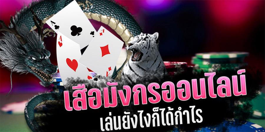 ข้อระวังในการเล่นไพ่ เสือ-มังกร ที่ควรรู้ไว้ก่อนเล่น